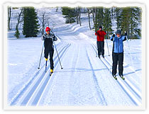 Cross-country and Telemark-skiing, snowshoeing