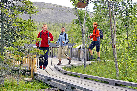 Nordic walking has become popular